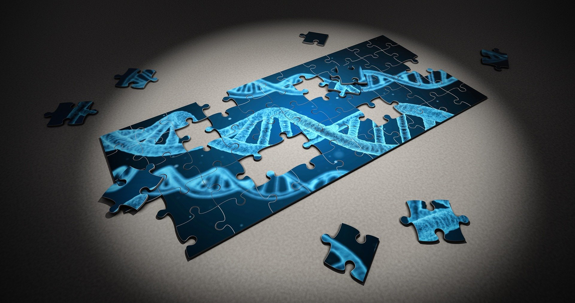 Implementation of non-coding DNA